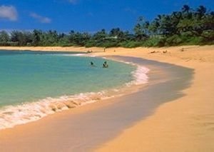 [Sunset Beach on O`ahu's North Shore]