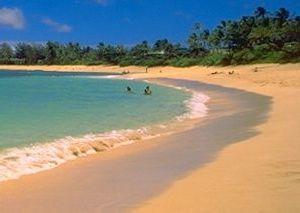 [Sunset Beach on O`ahu's North Shore]