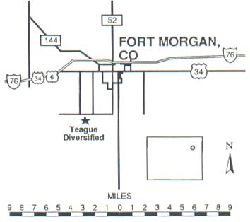 Fort Morgan Feedlot
