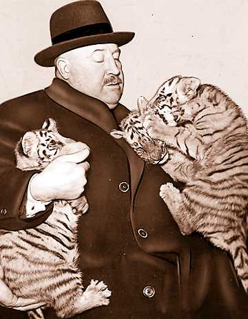 Zoo Director John Millen struggles with three tiger cubs the zoo acquired in 1933. Millen was director of the zoo from the time it opened until his death in 1956.