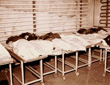 Bodies on gurneys pile up against the refrigerated wall of the old Wayne County Morgue on Brush on the edge of Greektown.
