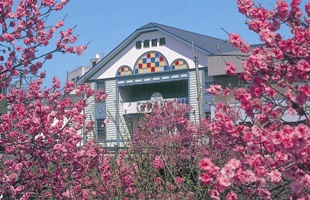 wakimachi theater